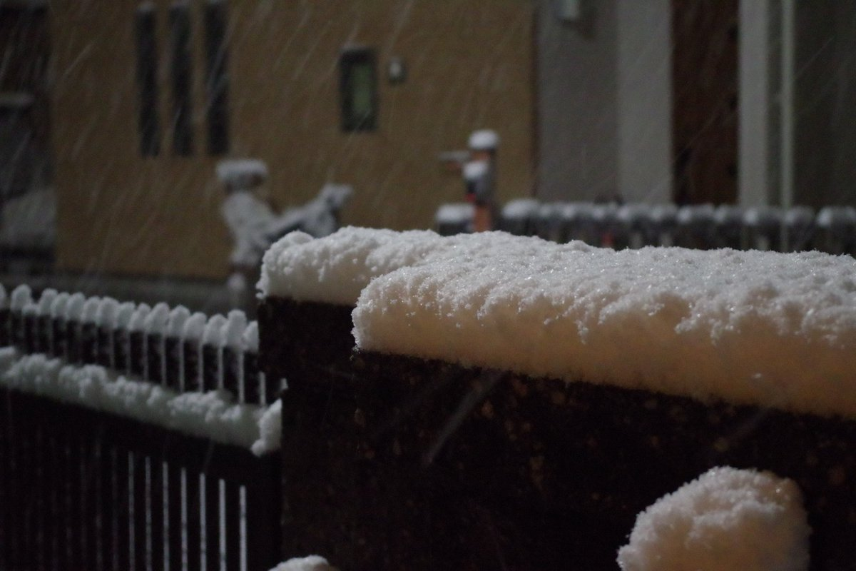 思った以上に雪積もってるわ。 草加 https://t.co/okOTtHHkLn