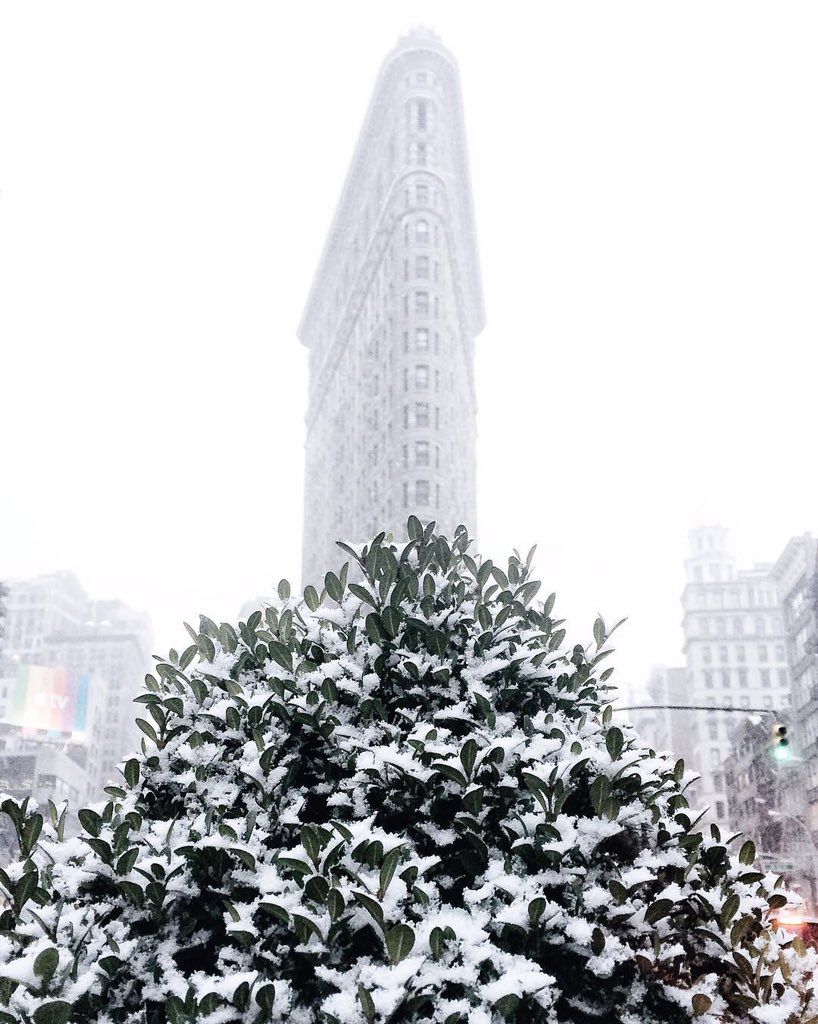 First snow in NYC. Photo shared by @gmp3 shared using #instagramnyc on @Instagram #NYC #❄️ https://t.co/6T9NKS88oB