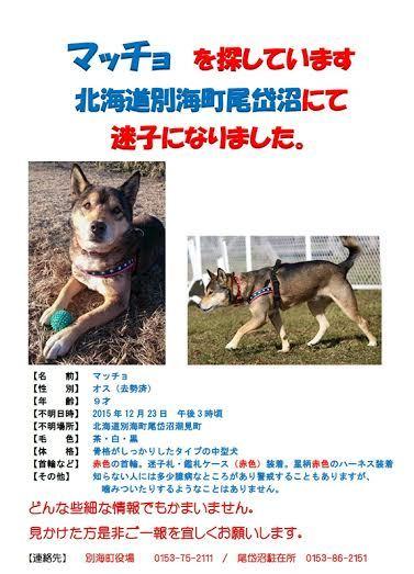 【北海道別海町/拡散希望/探して!!】 https://t.co/1rX7Y6EGU4
