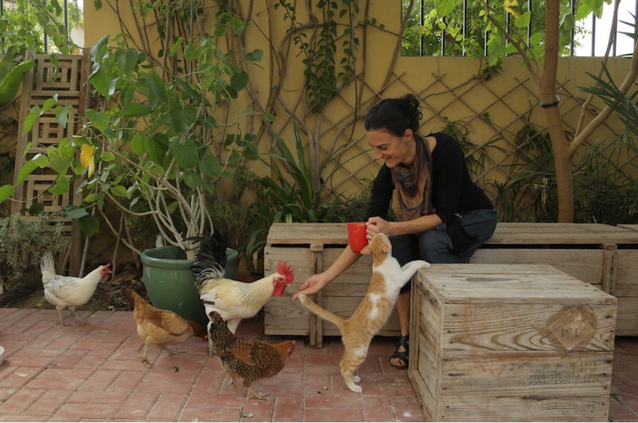 Paige Tantillo, a woman on a mission to prove that Qatar can support sustainable agriculture