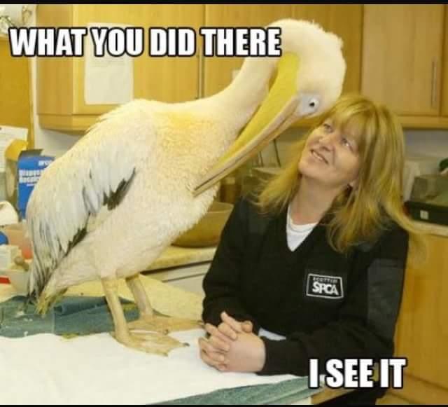 "Prezzo: ""Very soon they'll be calling me Dr. Jackson Makini.""  Mrs Okari: ""Herbal clinic or Drugs?""  Me:"