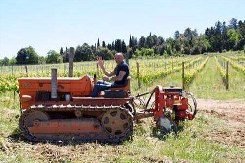 Here's Luciano Spalletti driving a tractor https://t.co/IZAl56Mp9p