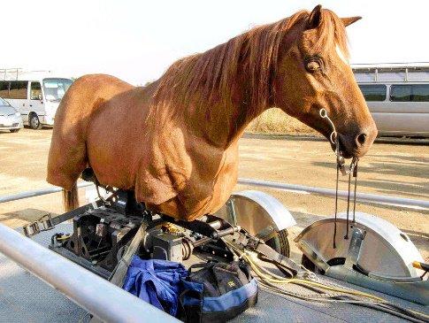 昨夜の『真田丸』冒頭。堺雅人の馬越しのアップで使用されたのは、日本初導入のハリウッド製「ロボット馬」だった。https://t.co/TvcBEPCIxw https://t.co/bgdW3StFiM