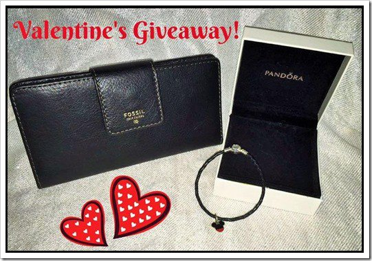 Valentine's Day Giveaway–Mickey Mouse Pandora Charm and Fossil Wallet #Giveaway (WW… https://t.co/86YcYdKyro https://t.co/cUAcJOkTIu