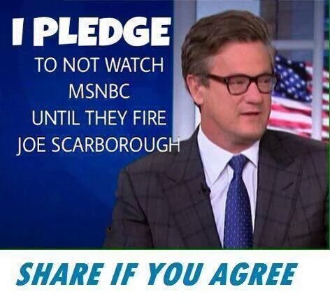 Pass on!  We don't need  former Foxnews Executive helping #MorningJoe promote #Gop Candidates. Call msnbc, tell them https://t.co/rDX3uyWuiS