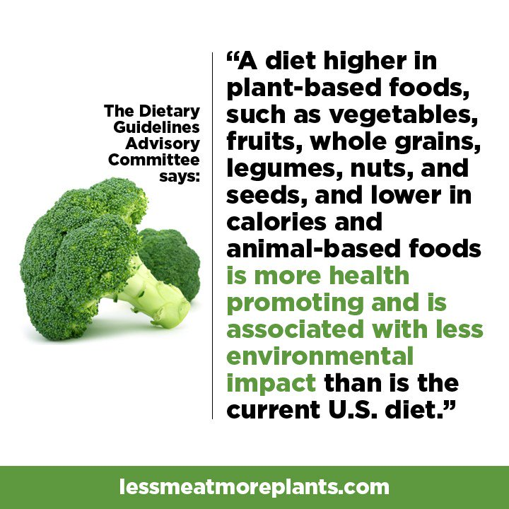 """Here is the only """"dietary guideline"""" you need. https://t.co/W54pvvFkTa"""