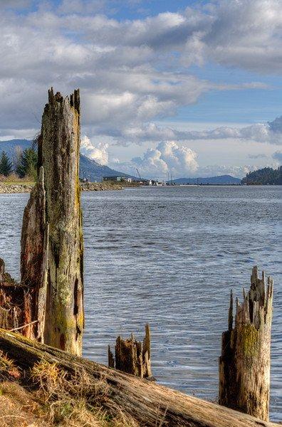Cowichan Estuary - #Cowichan Bay, Vancouver Island, British Columbia, #Canada #HDR #photography #landscape https://t.co/VOapPsR8k2