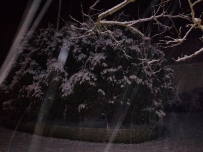 Here\s a snowy night picture from Plano, IL from the other night Ginger. Happy Birthday! !!