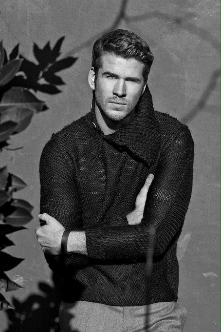 Happy 26th Birthday To Liam Hemsworth!