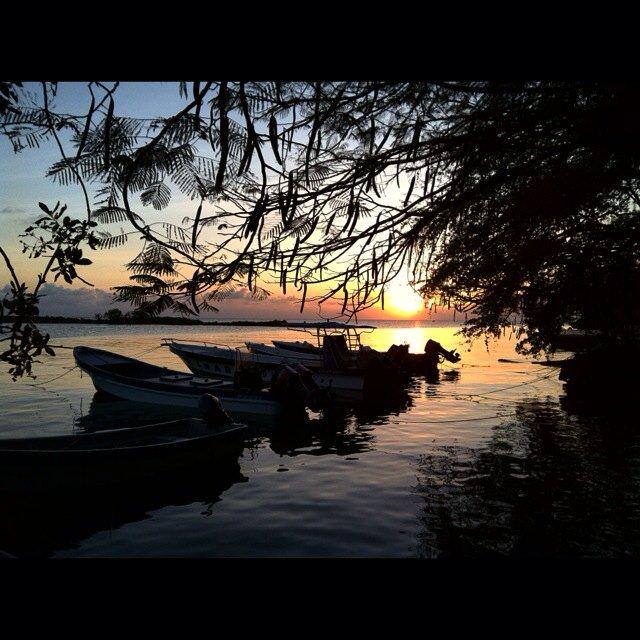 Enjoying A Beautiful Sunset! #SanAndres #island #home #life #beauty #jah #islandwoy #islandlife #Sunset #ocean https://t.co/wlWNvBiZxb