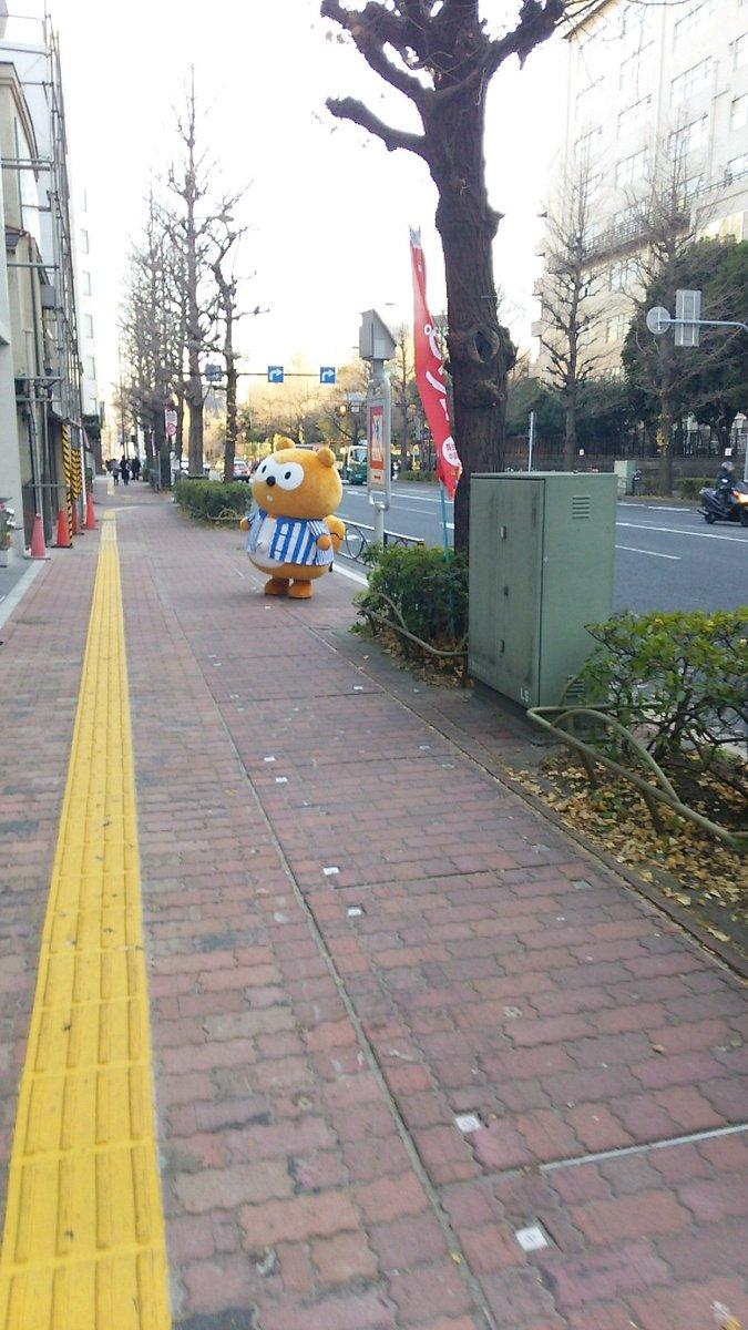 神田明神沿いにタヌキがいた(`・ω・´) https://t.co/3IHFy6mZN2