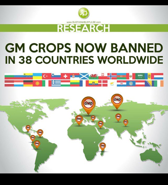 As the FDA approves another genetically modified crop (potatoes), a growing # of countries are flat out banning them https://t.co/h75yZh8V79