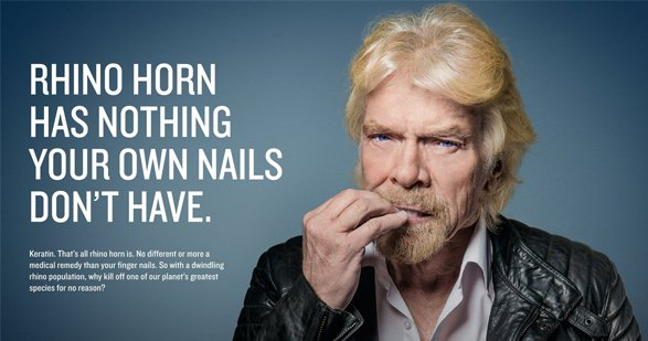 RT @EcoWatch: .@RichardBranson Speaks Out Against #Rhino Horn Trade https://t.co/wBuIuaGk7q @WildAid @Virgin @WWF @pamfoundation https://t.…