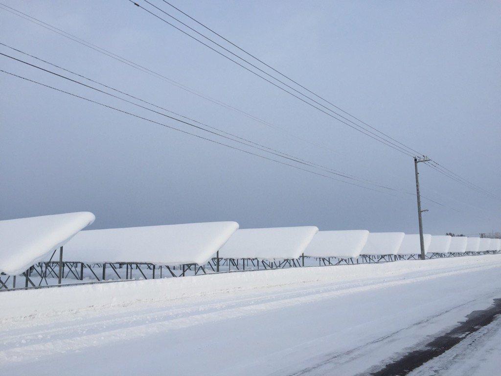 たまたま来週まで出勤なので「雪なんかすぐ落ちる」と言っている人のために道北の雪がどれくらい落ちないか追跡してみる。まあ気温に左右されるがな。 本日はマイナス20℃。 https://t.co/pclocUVOdc