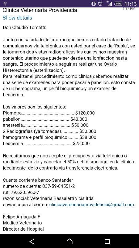 Encontramos gata en Providencia. Necesita tratamiento. Ayuda para encontrar fundación o $ para costear ya pagamos 50 https://t.co/qGfIUAeW8S