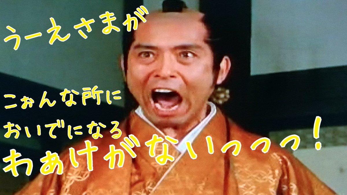 菅貫太郎の画像 p1_25