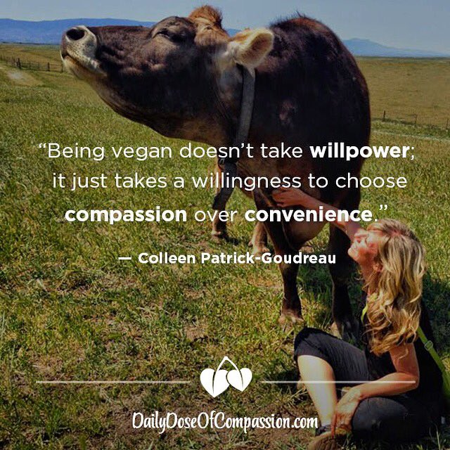 Being vegan doesn't take willpower; it just takes a willingness to choose mercy over misery. #dailydoseofcompassion https://t.co/uGrVMRhvBF