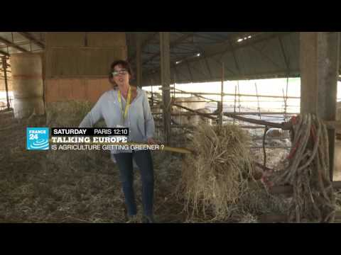 VIDEO -  Talking Europe - Is agriculture getting greener?