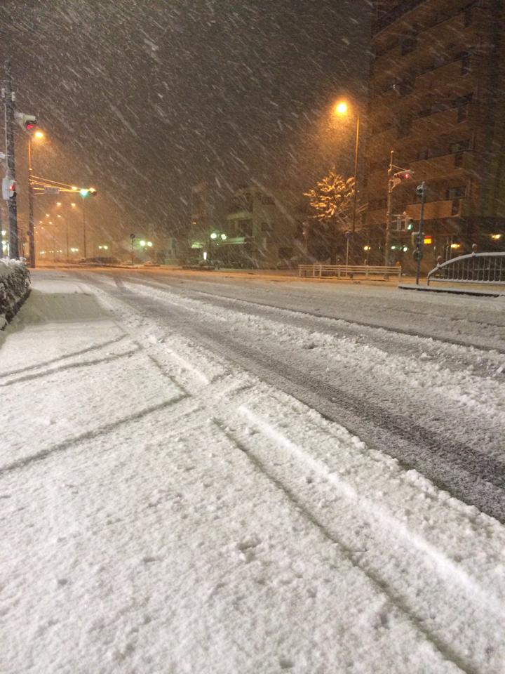 名古屋城周辺の路面状況。ノーマルタイヤがズルズル滑っていました( https://t.co/2ohkRSfroA