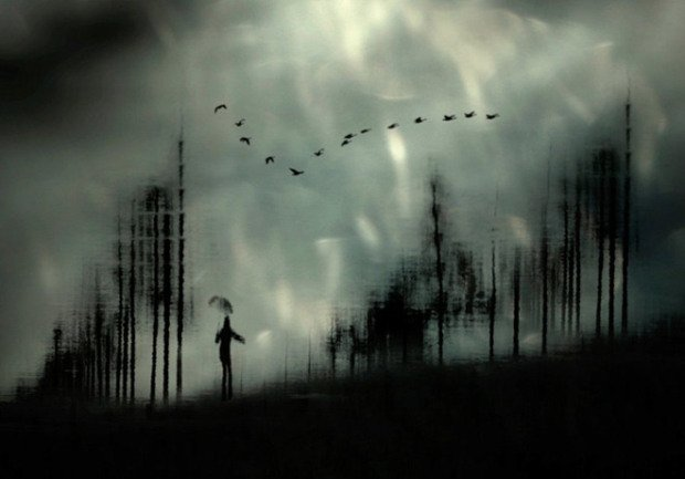 Singing in the rain by Anja Buehrer ~ #art #ajarmfield #photography https://t.co/nNWVfxXKEZ