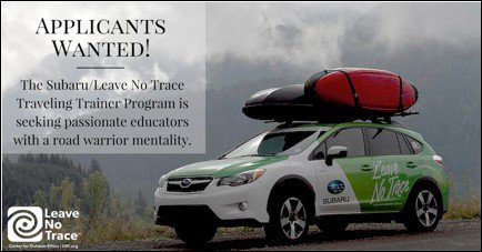 There is only one week left to find @leavenotrace's newest Traveling Trainer teams.https://t.co/Hz735ZPX9r https://t.co/G0diu60Qo2