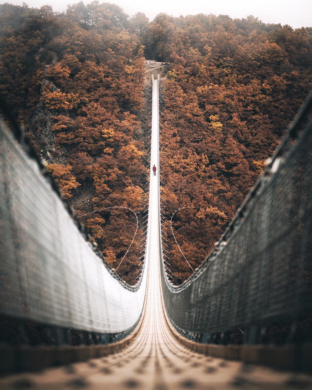 Geierlay rope suspension bridge, Germany | Photo by Johannes H (@pangeaproductions on IG) https://t.co/VExJyxhLkZ