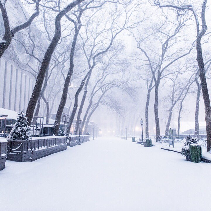 A deserted @bryantparknyc undisturbed by visitors early yesterday morning during blizzard. #NYCBlizzard https://t.co/TJjHMwPC4D
