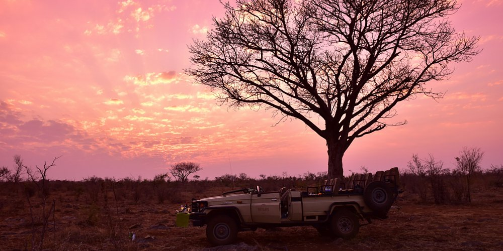 Travel the way South African's do and save on a safari trip! (via @MensJournal) »