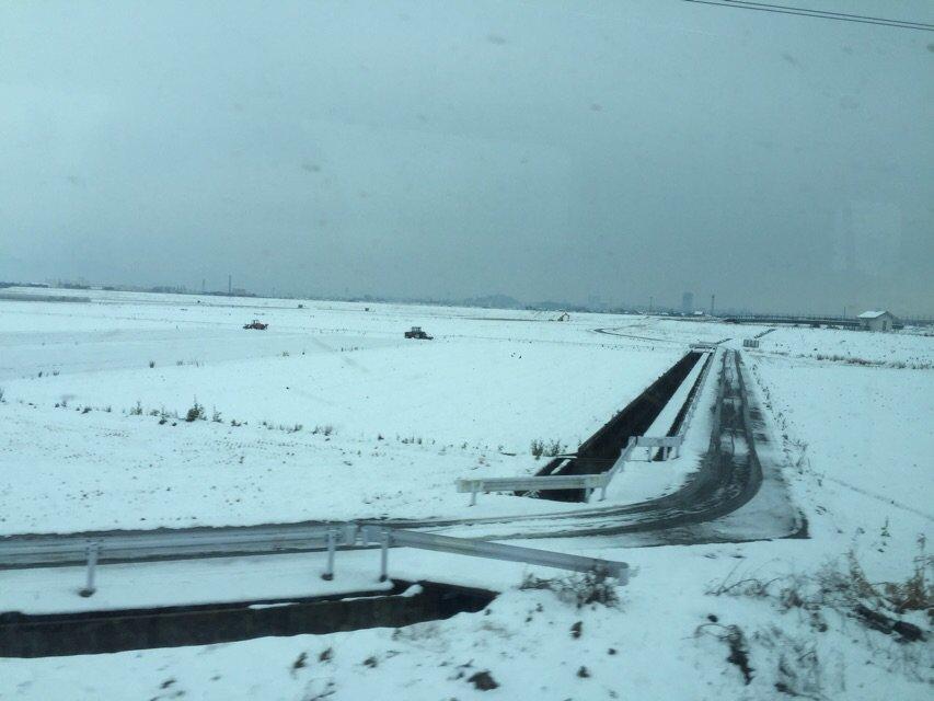 きれいな雪景色だろ……ここ佐賀県なんだぜ…北海道じゃないんだぜ…… https://t.co/yA7jFKPFiR