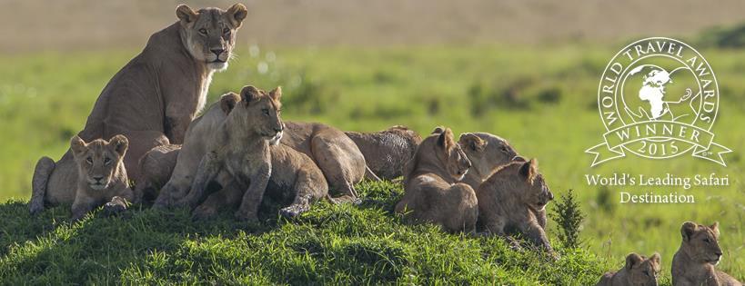 #WhyTouristsVisitKenya......We are the World's Leading Safari Destination. https://t.co/aXKztgvkJu