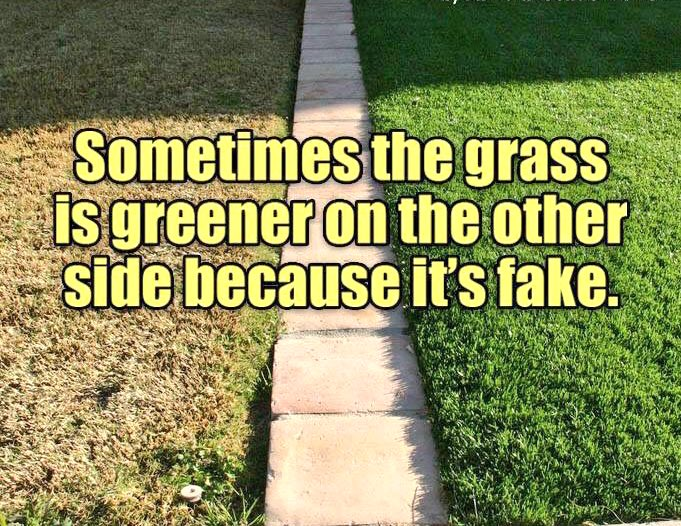 #LetsMakeTodayBetterBy understanding that the grass may look greener, but… https://t.co/tab17JENYX