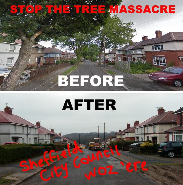 .@SheffCouncil are doing this. Support @SaveSheffTrees Petition: https://t.co/7VjYKtiakF… https://t.co/jx9HLxp19X