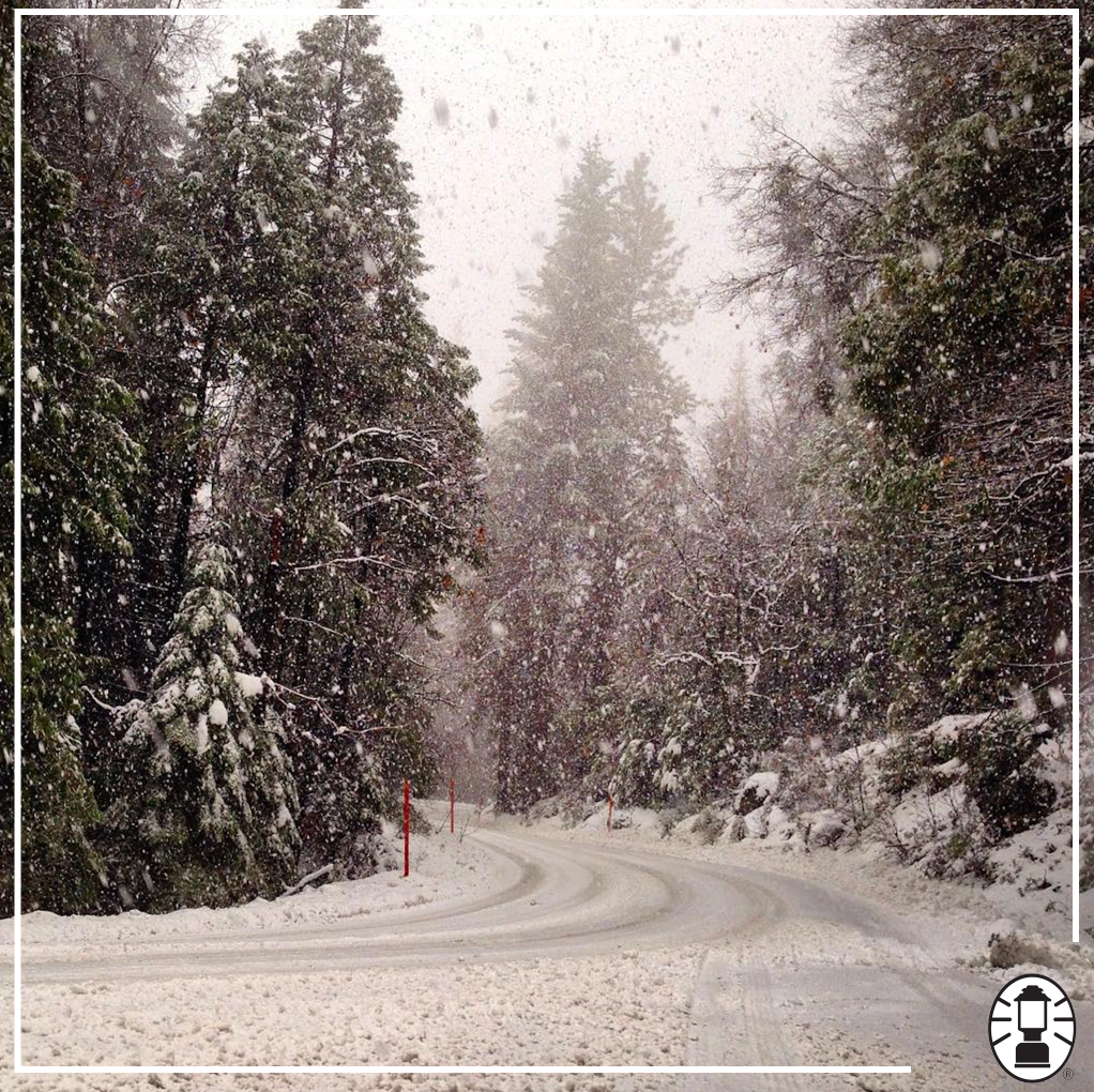 Snow falls beautifully in @YosemiteNPS.  IG