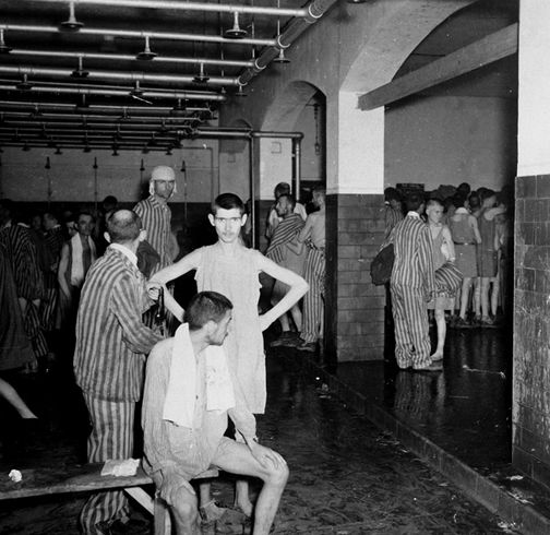 Фото людей в концлагере дахау голых женщин 18019 фотография