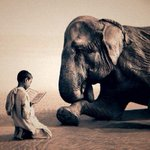 """""""La civilización de un pueblo se mide en la forma en que tratamos a los animales"""" ¿Cómo los tratas tú? https://t.co/fwUgFmX6zA"""
