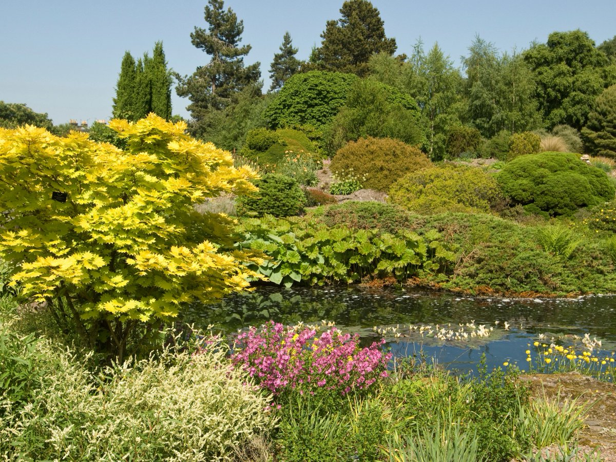 We are currently recruiting a Horticulturist to join the Rock and Alpine team #rbgehort https://t.co/aeeEQSIvZ8 https://t.co/MHLNTtuxlu
