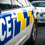 Greymouth bar manager injured in attack by dog set upon him by owner, police say