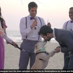 A Bride, A Groom And A Dog: This Wedding Is Truly Bow Wow