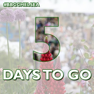 RT @GWandShows: The countdown begins...are you ready? ????  #BBCChelsea https://t.co/hFx11VAFox