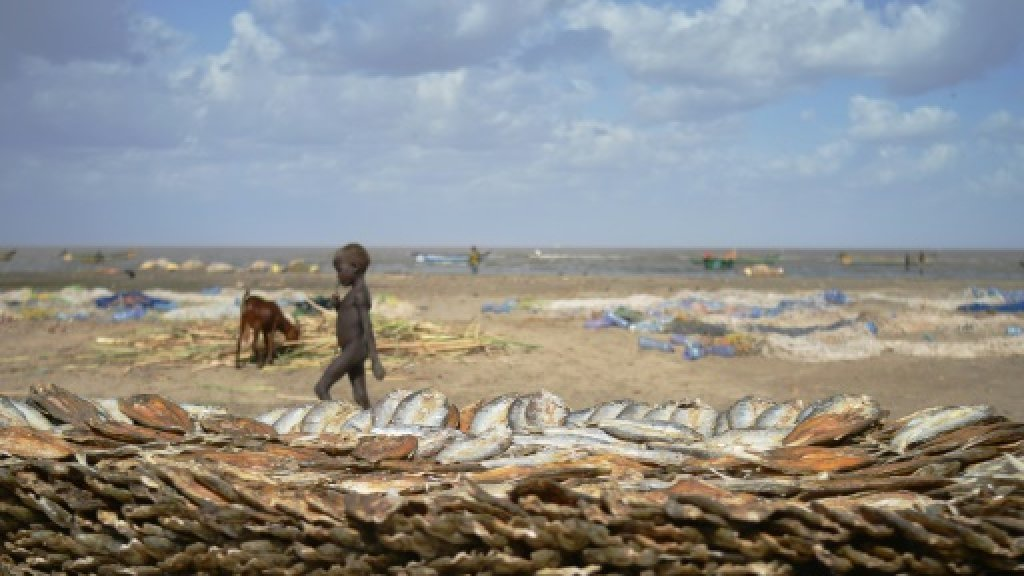 Fishing with guns on a lake under threat in Kenya
