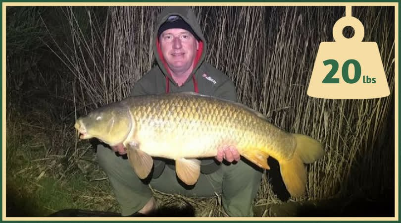 Very impressive from Stuart here netting this fantastic 20lbs <b>Common Carp</b> #CarpFishing #Angli