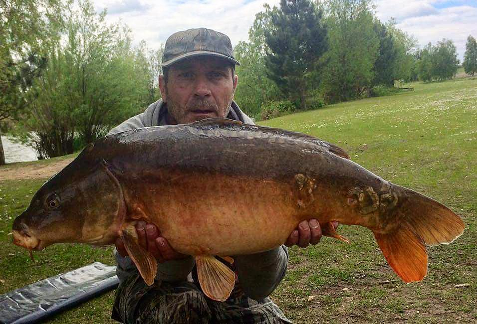 A dark 24lb mirror for member Kelvin #mirrorcarp #carpfishing #carplife #<b>Dayticket</b> #essex htt