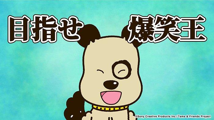 アニメ タマ&フレンズ~うちのタマ知りませんか?~ 今日のお話は「ゴンのギャグ研究」お笑い芸人ならぬ芸犬を目指すゴン。今