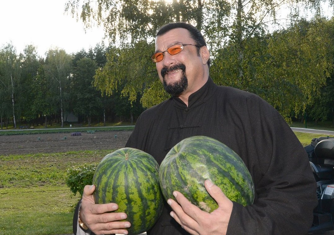 Ukraine bans Steven Seagal as 'threat to national security'