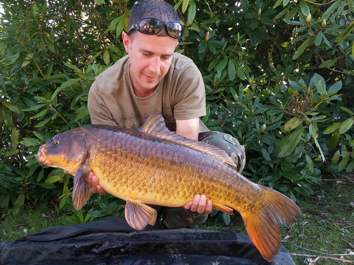 2 <b>Ghost</b> carp in a day, nice 😋 tiger nuts doing the job again. #carpfishing https://t.co/i3
