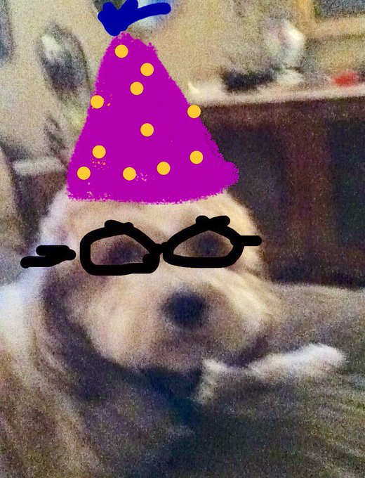 Maxwell wishes Russell russelled  a very Happy Birthday! Love you