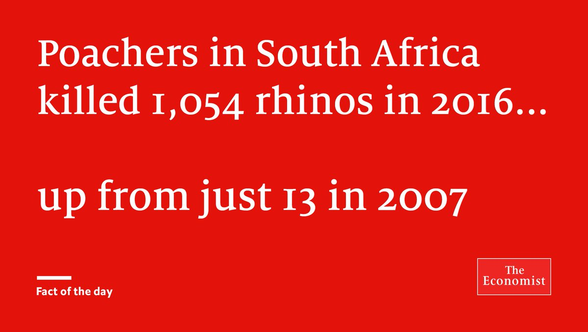South Africa is in the throes of a poaching epidemic