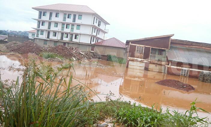 Entebbe Road landlords abandon houses due to floods