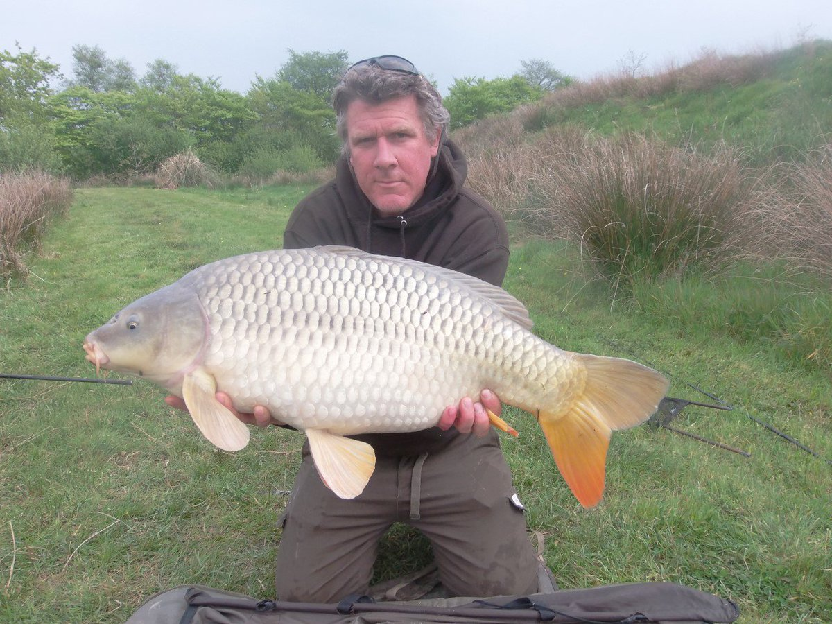 DAY TICKET STUNNER! 25lb Common from Xanadu #carpfishing #<b>Anglersparadise</b> #Nirvana https://t.