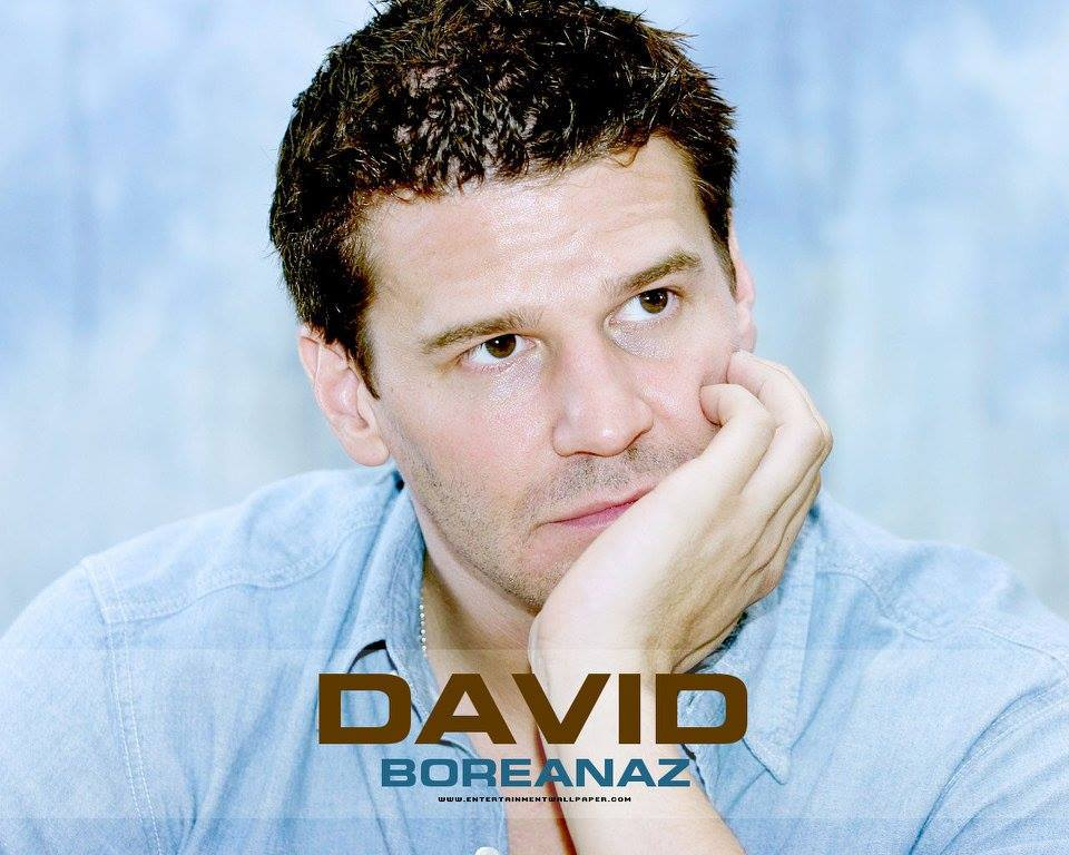 5-16 Happy birthday to David Boreanaz.